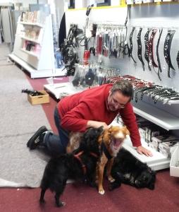 Michael räumt den Shop ein und wird von den Hunden unterstützt